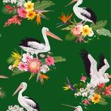 Sömlös modell för tropisk natur med pelikan och blommor Blom- bakgrund med Waterbirds för tyg, tapet Arkivfoto