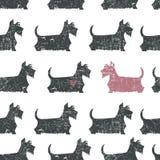 Sömlös modell för underhållande terrier för vektorsvart skotska royaltyfri illustrationer