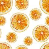Sömlös modell för vattenfärg av orange fruktskivor stock illustrationer