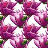 Sömlös modell för vattenfärg av rosa magnoliablommor royaltyfri illustrationer