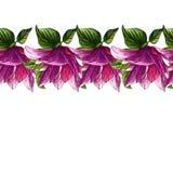 Sömlös modell för vattenfärg av rosa magnoliablommor stock illustrationer