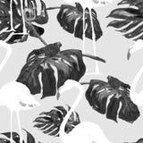 Sömlös modell för vattenfärg Hand målad illustration av tropiska sidor och blommor Vändkretssommarmotiv med den tropiska modellen Royaltyfria Foton