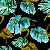 Sömlös modell för vattenfärg Hand målad illustration av tropiska sidor och blommor Vändkretssommarmotiv med den tropiska modellen Royaltyfri Bild