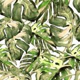 Sömlös modell för vattenfärg Hand målad illustration av tropiska sidor och blommor Vändkretssommarmotiv med den Monstera modellen royaltyfri illustrationer