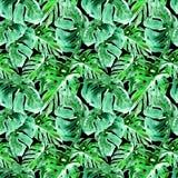 Sömlös modell för vattenfärg Hand målad illustration av tropiska sidor och blommor Vändkretssommarmotiv med Liana Pattern Arkivbild