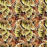 Sömlös modell för vattenfärg Hand målad illustration av tropiska sidor och blommor Vändkretssommarmotiv med Liana Pattern royaltyfria foton