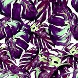 Sömlös modell för vattenfärg Hand målad illustration av tropiska sidor och blommor Vändkretssommarmotiv med Liana Pattern Arkivfoton