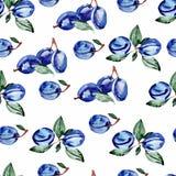 Sömlös modell för vattenfärg med bär och sidor Royaltyfria Bilder
