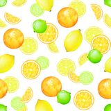 Sömlös modell för vattenfärg med citronen, limefrukt och apelsinen Arkivfoto