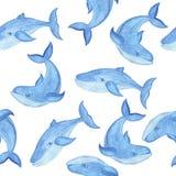 Sömlös modell för vattenfärg med det blåa valet, tecknad filmstil Arkivbild