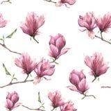 Sömlös modell för vattenfärg med magnolian Hand målad blom- prydnad som isoleras på vit bakgrund Rosa färgblomma för stock illustrationer