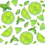 Sömlös modell för vattenfärg med skivor av limefrukt- och mintkaramellsidor Arkivbild