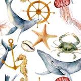 Sömlös modell för vattenfärg med undervattens- djur Handen målade den val-, manet-, sjöstjärna- och roderillustrationen royaltyfria foton