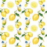 Sömlös modell för vattenfärglemonad Citrus bakgrund för vit för andcocktailprydnadisolatedon För design tyg eller stock illustrationer