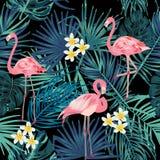 Sömlös modell för vektor av flamingo, sidamonstera Tropiskt l vektor illustrationer
