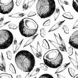 Sömlös modell för vektor av kokosnöten Hand dragen inristad konst vektor illustrationer
