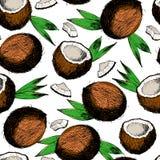 Sömlös modell för vektor av kokosnötter, skivor och sidor Hand dragen färgad inristad konst Royaltyfri Fotografi