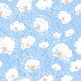 Sömlös modell för vektor med blommor av bomull Illustration av blom- bakgrund Arkivbild