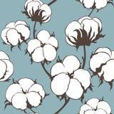 Sömlös modell för vektor med bomullsväxten Filialer med blommabakgrund Royaltyfri Fotografi