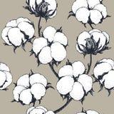 Sömlös modell för vektor med bomullsväxter Filialer med blommabakgrund Fotografering för Bildbyråer
