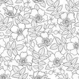 Sömlös modell för vektor med den rosa eller Rosa canina översiktshunden Blomma, höfter och sidor på den vita bakgrunden Nyponmode stock illustrationer