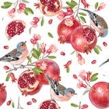 Sömlös modell för vektor med fåglar på granatäpplet stock illustrationer