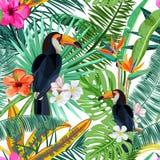 Sömlös modell för vektor med tropiska palmblad, blommor och fågeltukan Sommardesign för modetextiltryck royaltyfri illustrationer