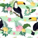 Sömlös modell för vektor med tukanfåglar på tropiska filialer med sidor och blommor vektor illustrationer