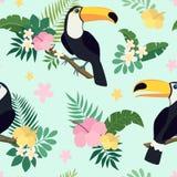 Sömlös modell för vektor med tukanfåglar på tropiska filialer med sidor och blommor Arkivbilder