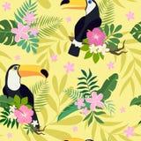 Sömlös modell för vektor med tukanfåglar på tropiska filialer med sidor och blommor stock illustrationer
