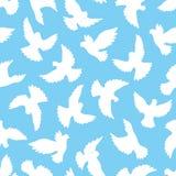 Sömlös modell för vita duvor på en blå bakgrund Royaltyfri Foto