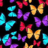 Sömlös modell illusten för vektor för monark för fjärilsblåttmorpho Royaltyfri Fotografi