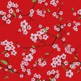 Sömlös modell kinessakura för röd kimono Arkivbild