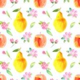 Sömlös modell med äpplet, päronet och blomman Matbild Arkivfoton