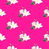 Sömlös modell med att blomstra filialer av körsbäret Vita blommor och knoppar på en rosa bakgrund för blomma för japan Cherryclos vektor illustrationer
