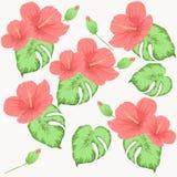 Sömlös modell med blommor av hibiskusrosa färg- och gräsplansidor stock illustrationer