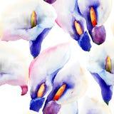 Sömlös modell med blommor för Callalilja Arkivfoto