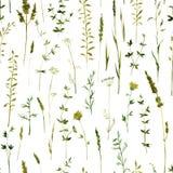 Sömlös modell med blommor och gräs royaltyfri illustrationer