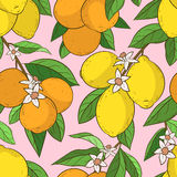 Sömlös modell med citronapelsiner stock illustrationer