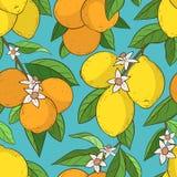 Sömlös modell med citronapelsiner royaltyfri illustrationer