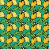 Sömlös modell med citronen Royaltyfri Foto