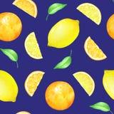 Sömlös modell med citrusfrukter och gräsplansidor Royaltyfria Bilder