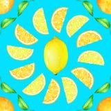 Sömlös modell med citrusfrukter och gräsplansidor på blå bakgrund Royaltyfri Foto