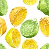 Sömlös modell med citrusträdfrukter som apelsinen, citron och stock illustrationer