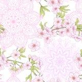 Sömlös modell med den japanska blomningen sakura Vektormaterielillu Arkivfoto