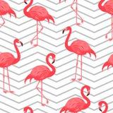 Sömlös modell med den röda flamingo Arkivfoto