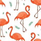 Sömlös modell med den röda flamingo Fotografering för Bildbyråer
