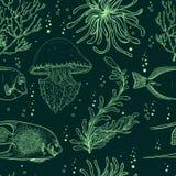 Sömlös modell med den tropiska fisken, manet, flottaväxter och havsväxt För vektorillustration för tappning hand dragit marin- li Arkivfoton