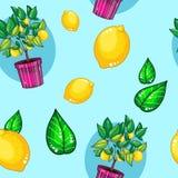 Sömlös modell med den utdragna illustrationen för hand av tecknad filmcitronträdet i keramiskt kruka och citron och blad royaltyfri illustrationer