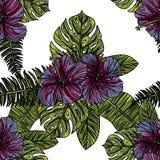 Sömlös modell med den violetta hibiskusen Vektor Illustrationer